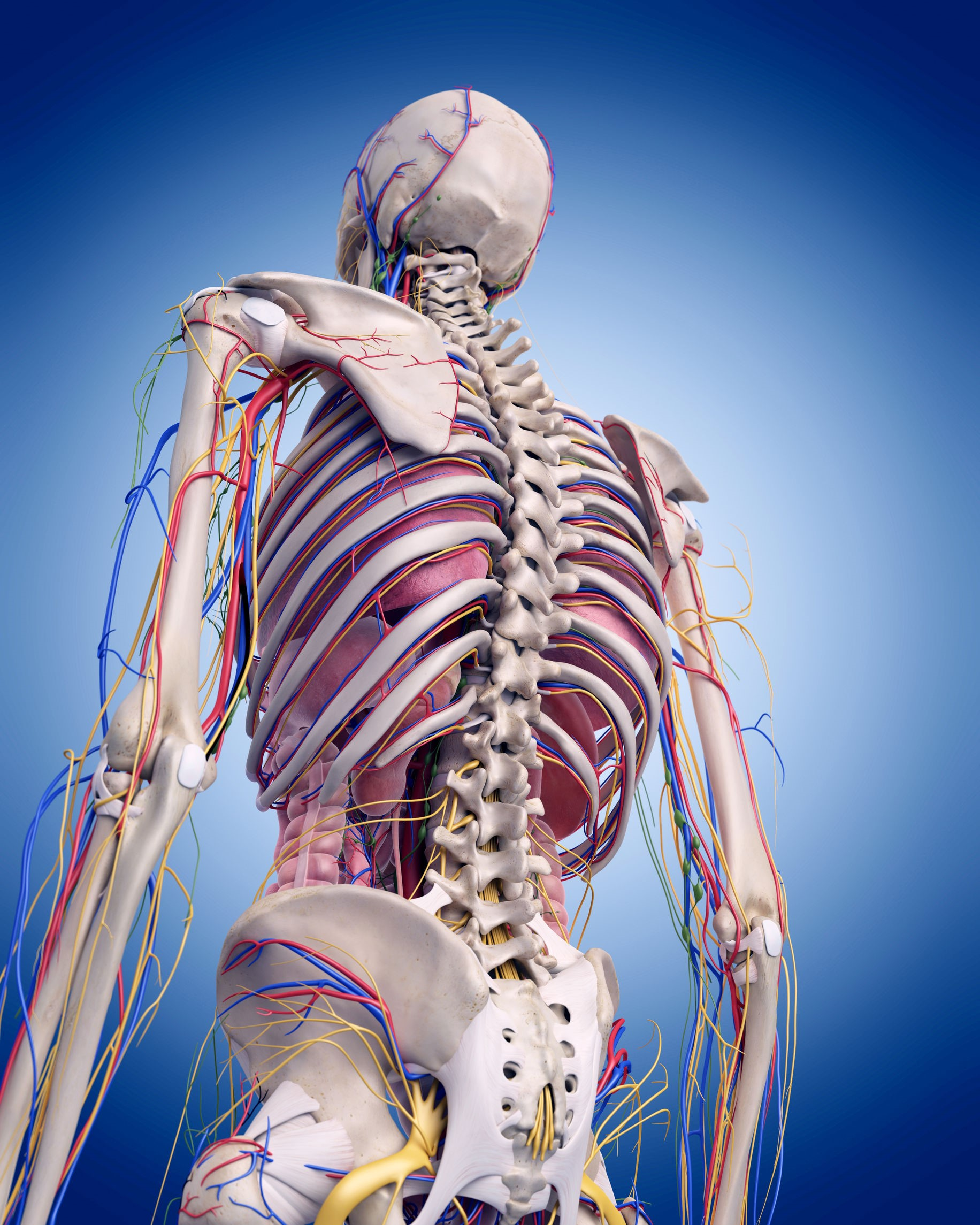 mid back pain- thoracic adjustments